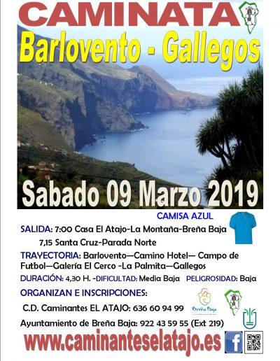 Cartel Barlovento-Gallegos19 ( 0 )
